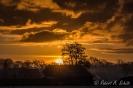 Sonnenaufgang in Uddel, NL