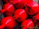 rote Bojen